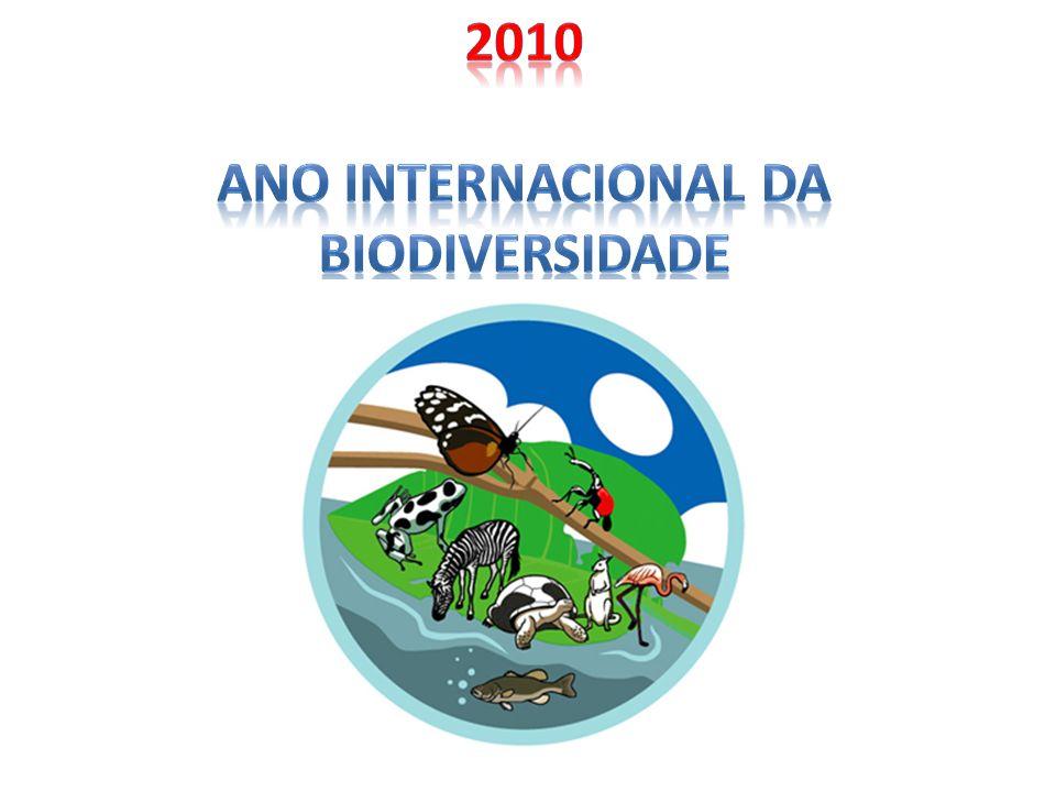 Cancún 2010 (COP16/CMP6) La COP16/CMP6 es la 16ª edición de la Conferencia de las Partes de la Convención Marco de Naciones Unidas sobre el Cambio Climático, y la 6ª Conferencia de las Partes actuando como Reunión de las Partes del Protocolo de Kyoto.