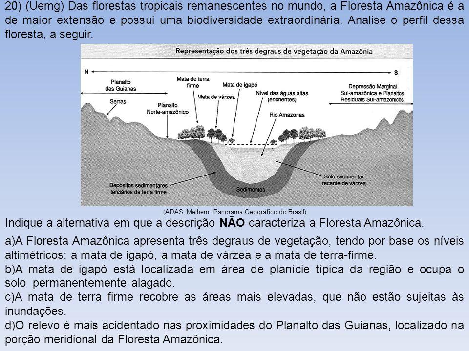 20) (Uemg) Das florestas tropicais remanescentes no mundo, a Floresta Amazônica é a de maior extensão e possui uma biodiversidade extraordinária. Anal