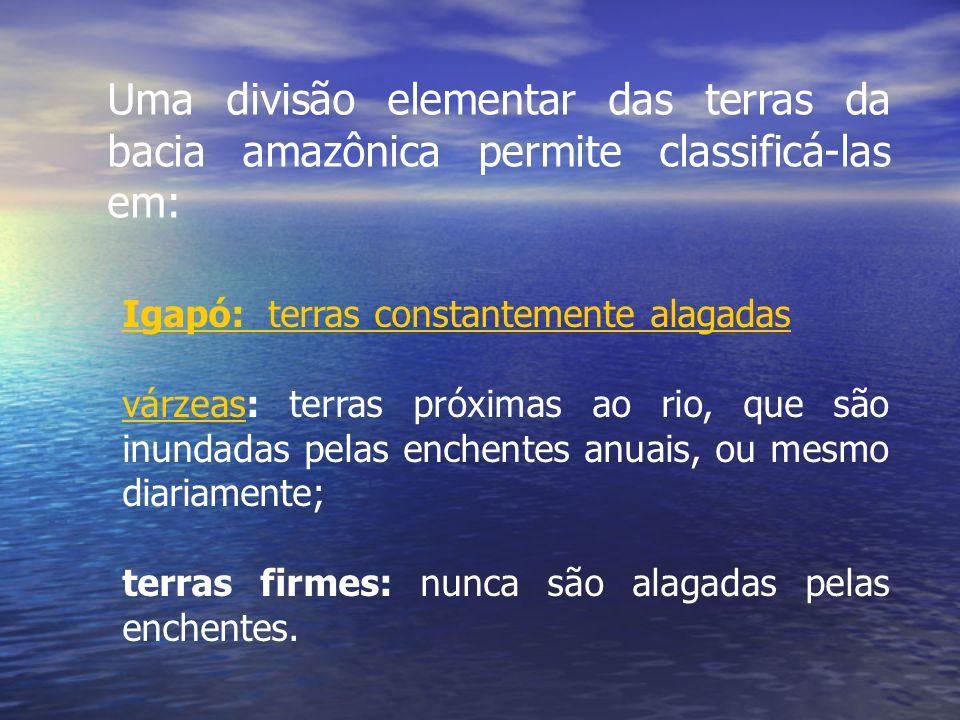 Uma divisão elementar das terras da bacia amazônica permite classificá-las em: Igapó: terras constantemente alagadas várzeasvárzeas: terras próximas a