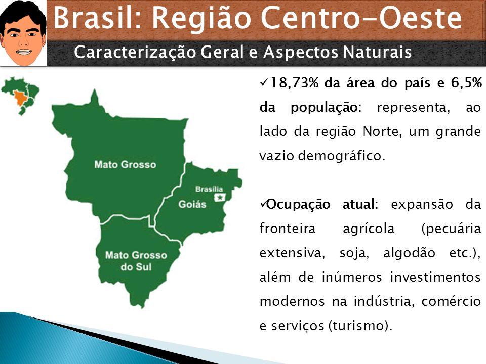Brasil: Região Centro-Oeste Caracterização Geral e Aspectos Naturais 18,73% da área do país e 6,5% da população: representa, ao lado da região Norte,