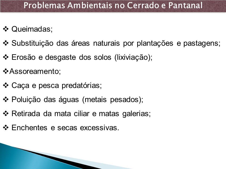 Problemas Ambientais no Cerrado e Pantanal Queimadas; Substituição das áreas naturais por plantações e pastagens; Erosão e desgaste dos solos (lixivia