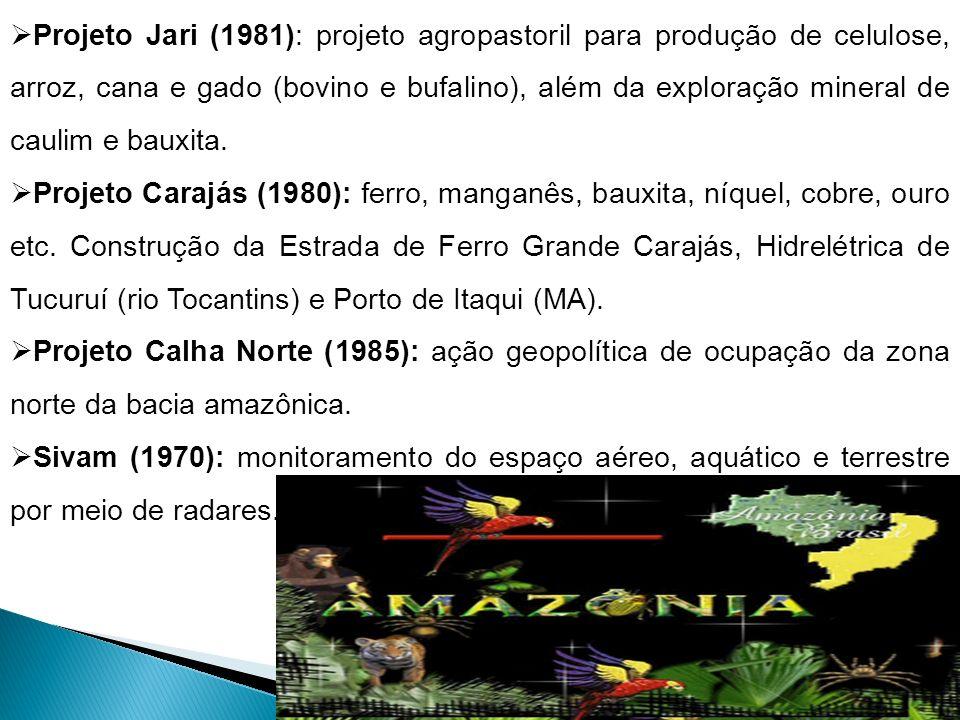 Projeto Jari (1981): projeto agropastoril para produção de celulose, arroz, cana e gado (bovino e bufalino), além da exploração mineral de caulim e ba