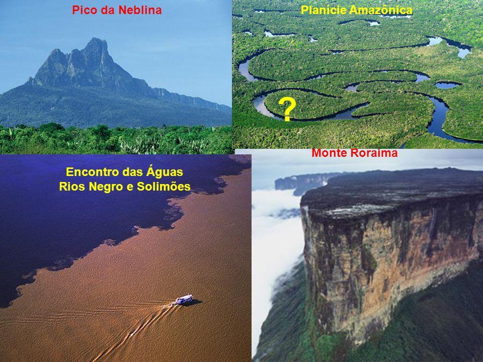 Pico da Neblina Monte Roraima Planície Amazônica Encontro das Águas Rios Negro e Solimões ?