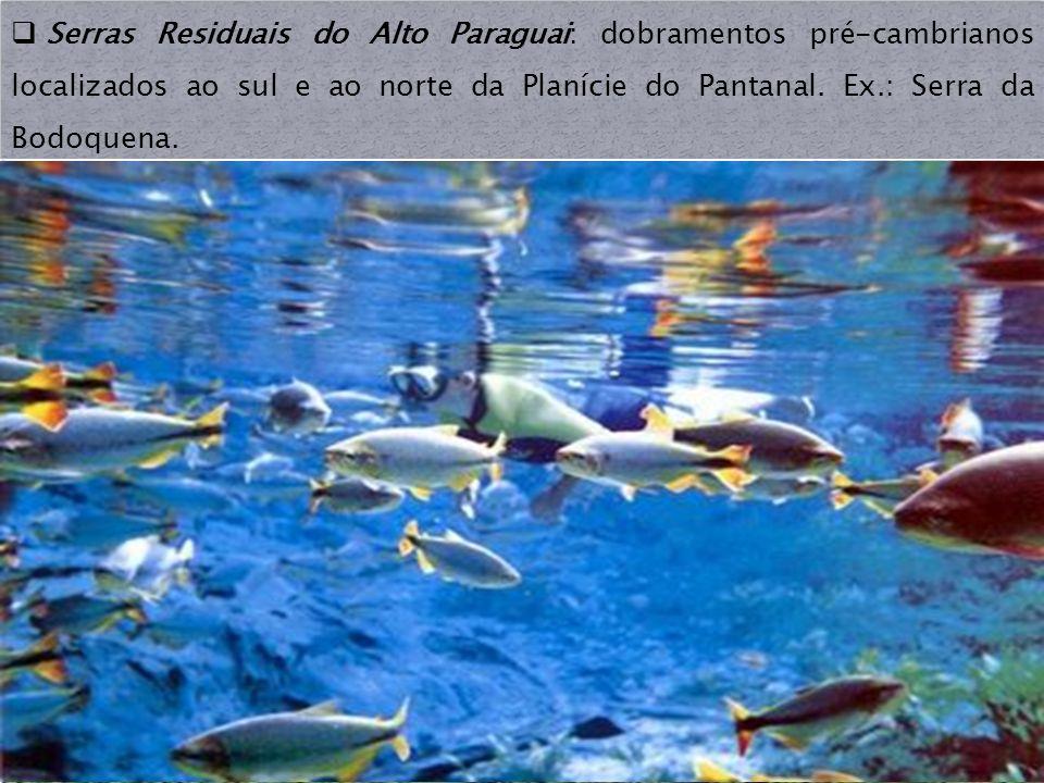 Serras Residuais do Alto Paraguai: dobramentos pré-cambrianos localizados ao sul e ao norte da Planície do Pantanal. Ex.: Serra da Bodoquena.