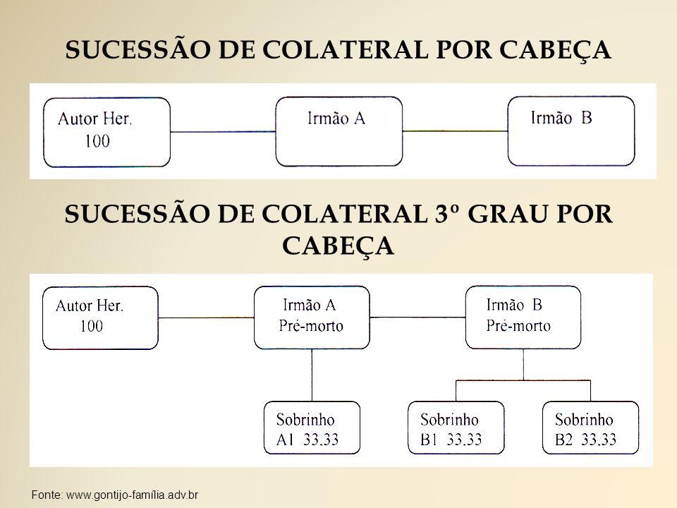 Fonte: www.gontijo-família.adv.br SUCESSÃO DE COLATERAL POR CABEÇA SUCESSÃO DE COLATERAL 3º GRAU POR CABEÇA