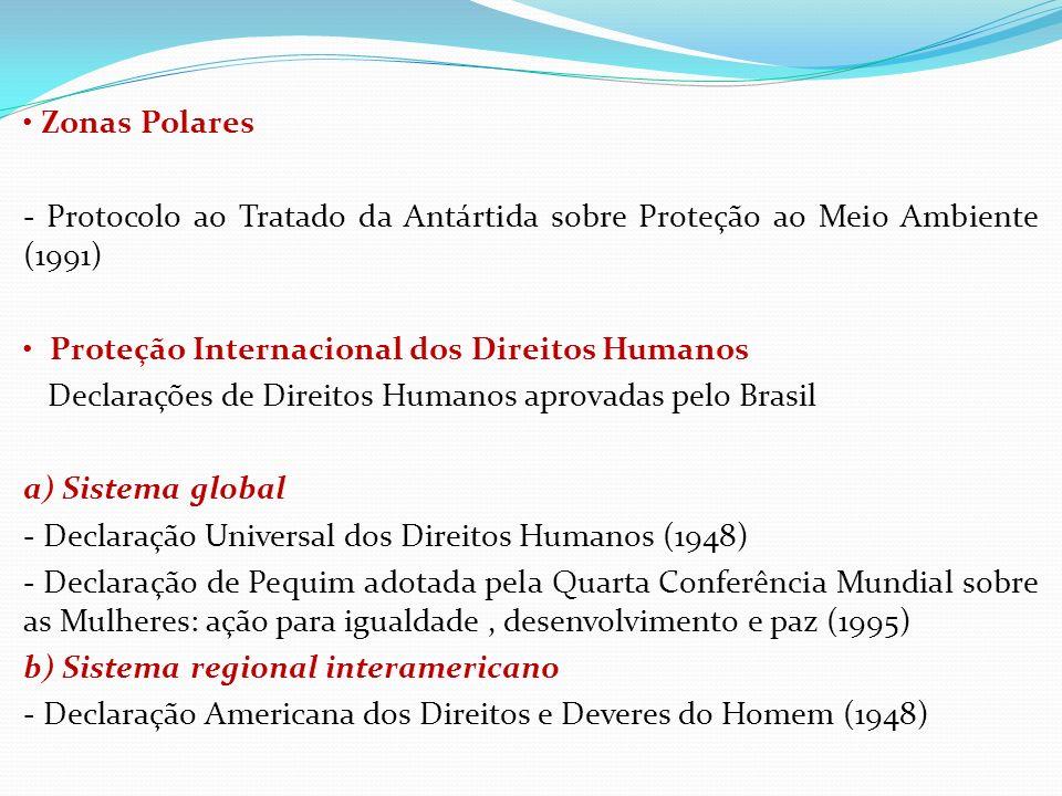 Zonas Polares - Protocolo ao Tratado da Antártida sobre Proteção ao Meio Ambiente (1991) Proteção Internacional dos Direitos Humanos Declarações de Di