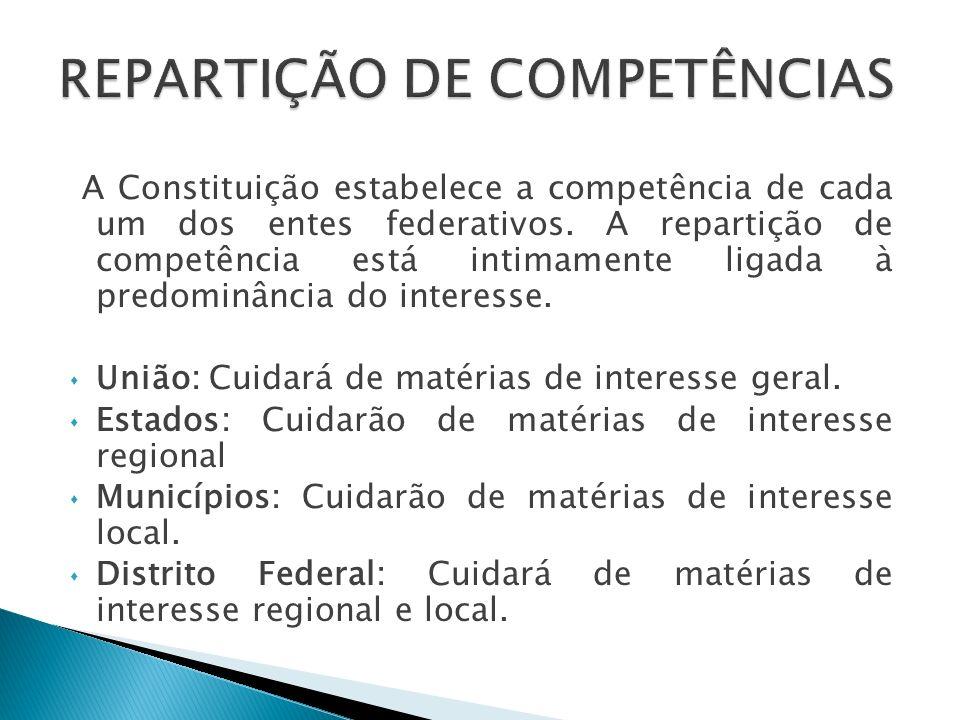 Características O Território não é ente da federação, mas sim integrante da União.