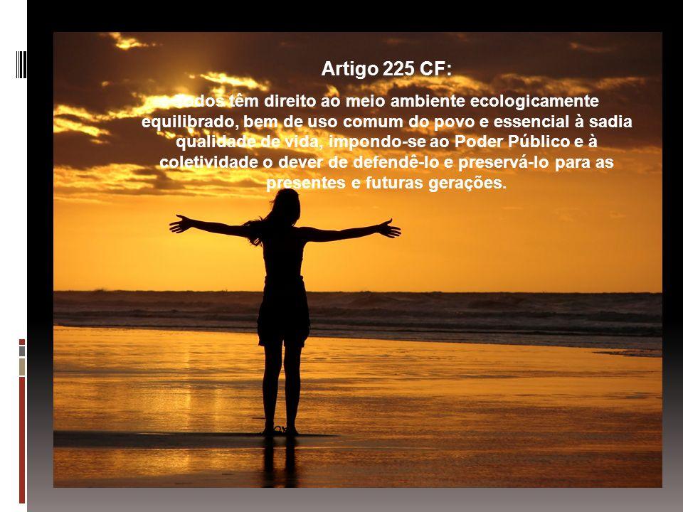 Artigo 225 CF: Todos têm direito ao meio ambiente ecologicamente equilibrado, bem de uso comum do povo e essencial à sadia qualidade de vida, impondo-