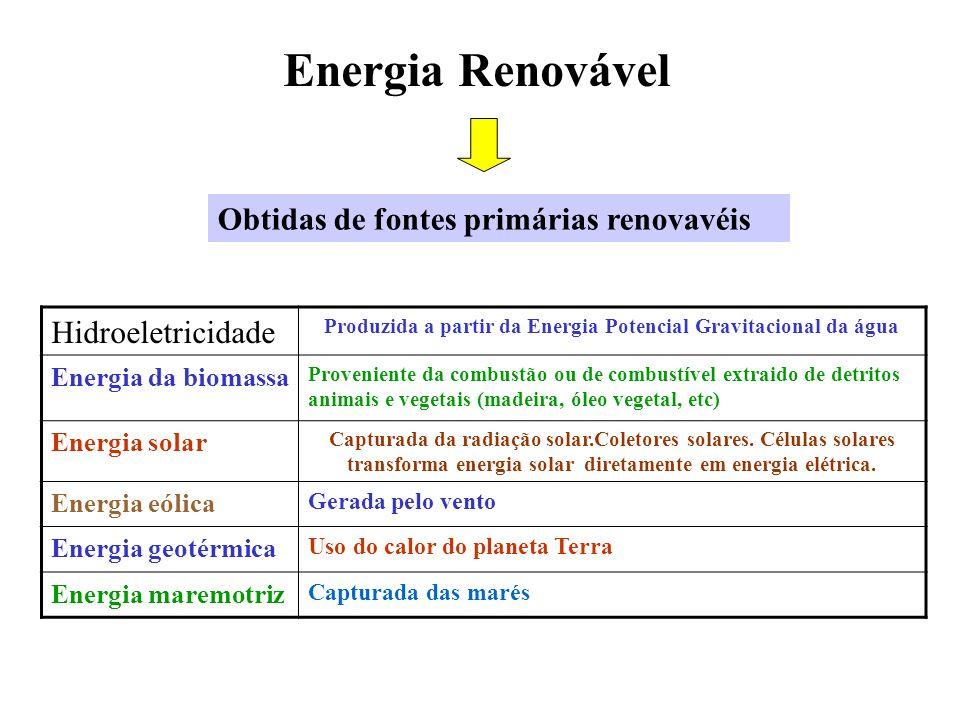 Energia Renovável Hidroeletricidade Produzida a partir da Energia Potencial Gravitacional da água Energia da biomassa Proveniente da combustão ou de c