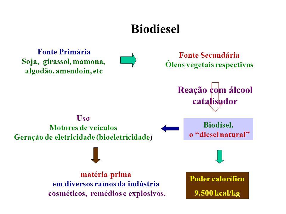 Biodiesel matéria-prima em diversos ramos da indústria cosméticos, remédios e explosivos. Fonte Primária Soja, girassol, mamona, algodão, amendoin, et