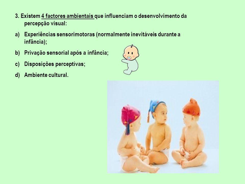 3. Existem 4 factores ambientais que influenciam o desenvolvimento da percepção visual: a)Experiências sensorimotoras (normalmente inevitáveis durante