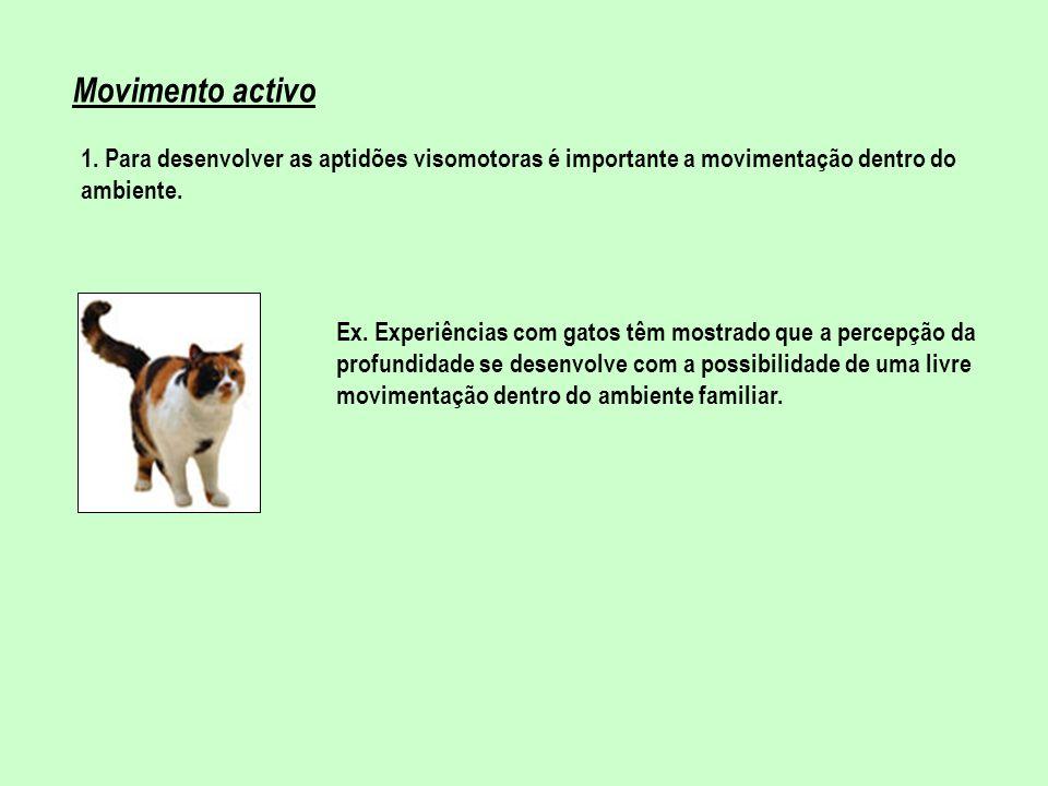 Movimento activo 1. Para desenvolver as aptidões visomotoras é importante a movimentação dentro do ambiente. Ex. Experiências com gatos têm mostrado q