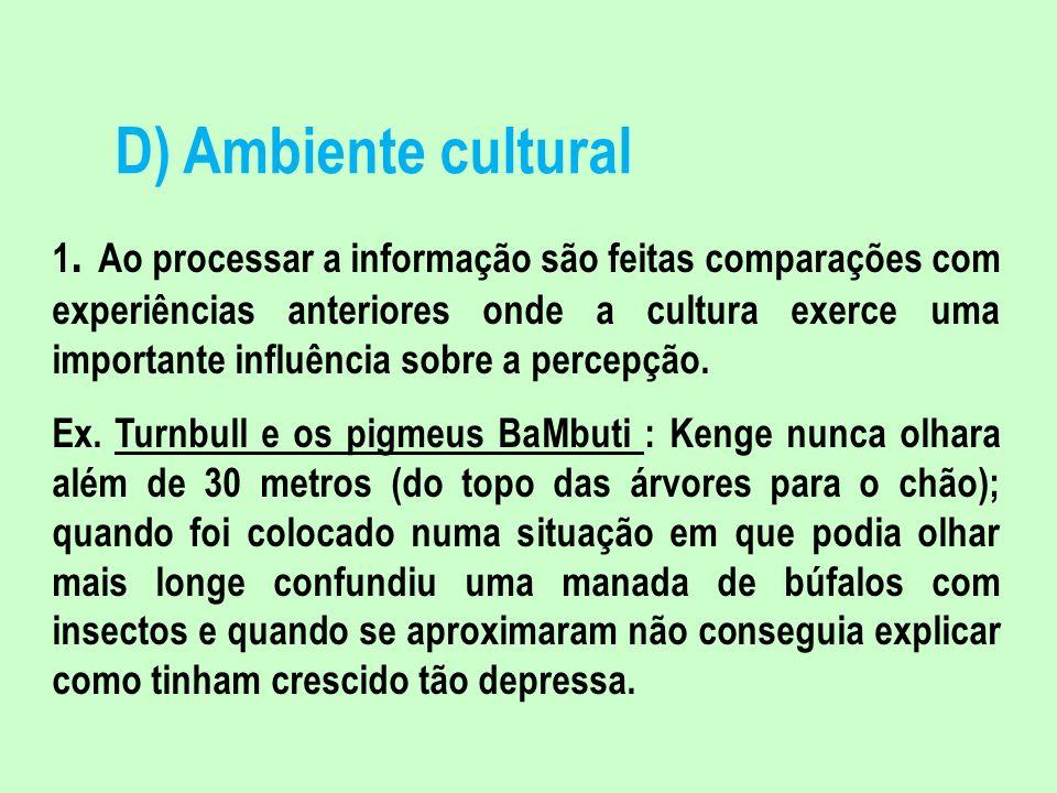D) Ambiente cultural 1. Ao processar a informação são feitas comparações com experiências anteriores onde a cultura exerce uma importante influência s