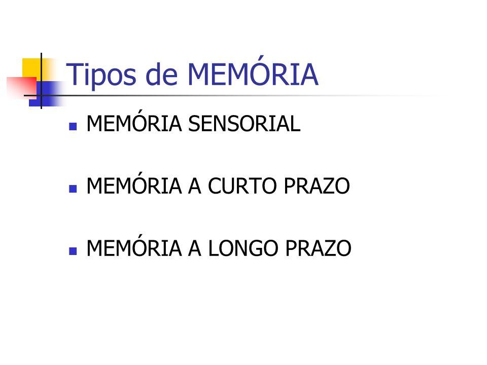 RECUPERAÇÃO DA MEMÓRIA DE LONGO PRAZO Pistas de Recuperação Memória Fotográfica Processos Construtivos da Memória Memória Autobiográfica