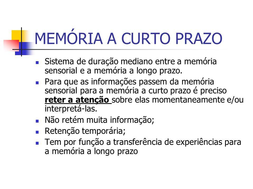 MEMÓRIA A LONGO PRAZO Retém muita informação durante muito tempo.