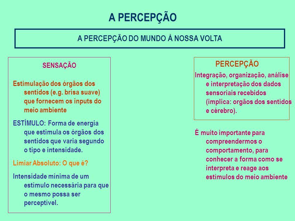 COGNIÇÃO E LINGUAGEM 1.