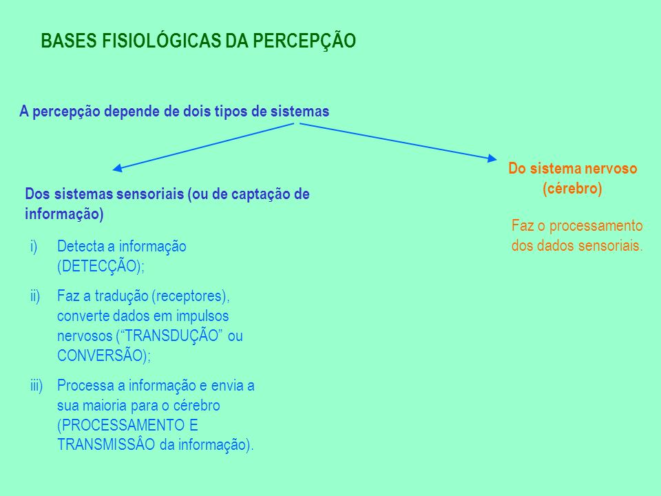 BASES FISIOLÓGICAS DA PERCEPÇÃO A percepção depende de dois tipos de sistemas Dos sistemas sensoriais (ou de captação de informação) Do sistema nervos