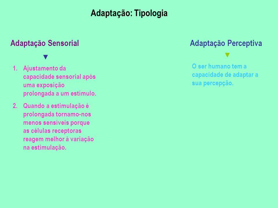 Adaptação Sensorial 1.Ajustamento da capacidade sensorial após uma exposição prolongada a um estímulo. 2.Quando a estimulação é prolongada tornamo-nos