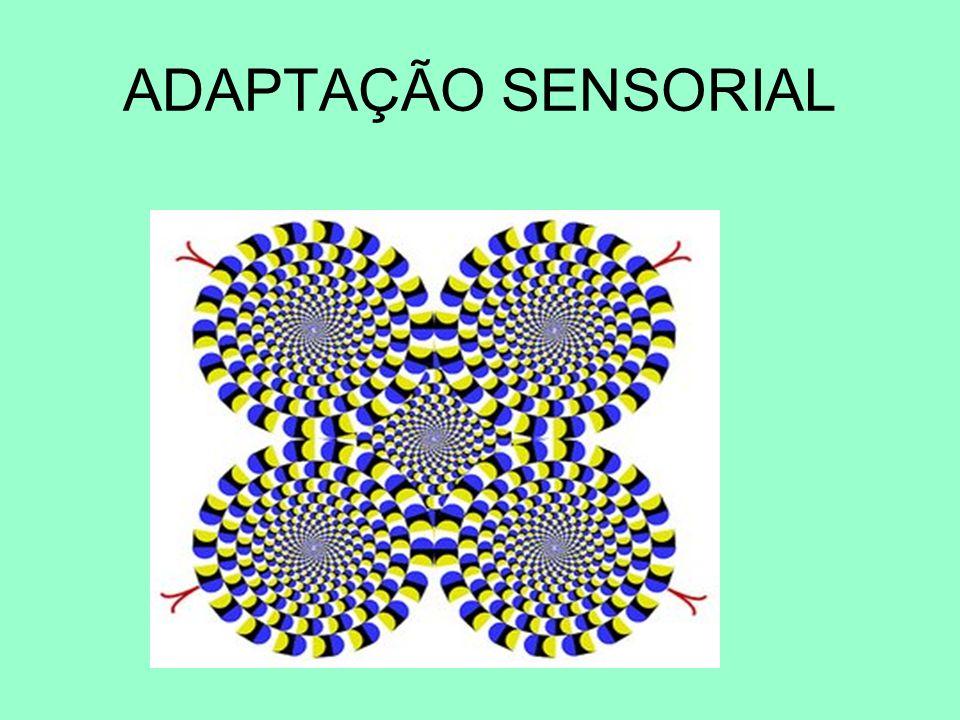 Tende-se a agrupar os 11 sentidos em 5 grupos de sentidos perceptivos: Sentido VisualVista Sentido AuditivoAudição Sentido Somato-SensorialContacto físico, pressão profunda, calor, frio, dor.
