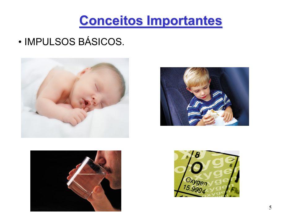 5 Conceitos Importantes IMPULSOS BÁSICOS.