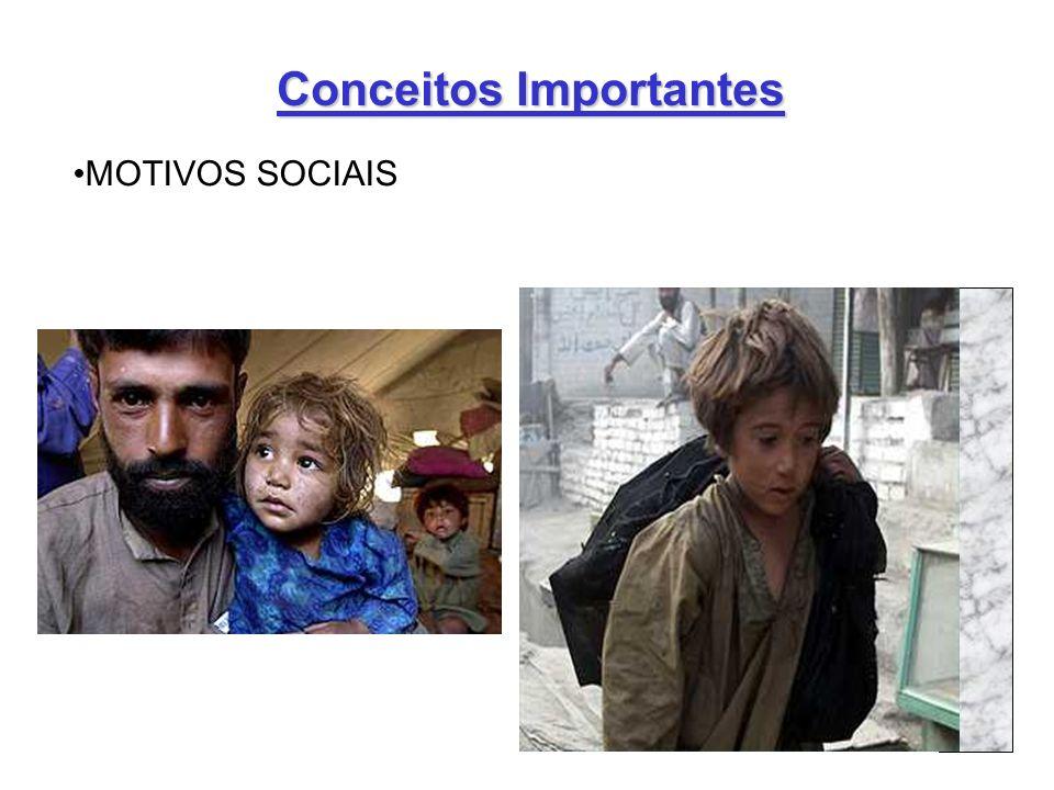 7 Conceitos Importantes MOTIVOS SOCIAIS
