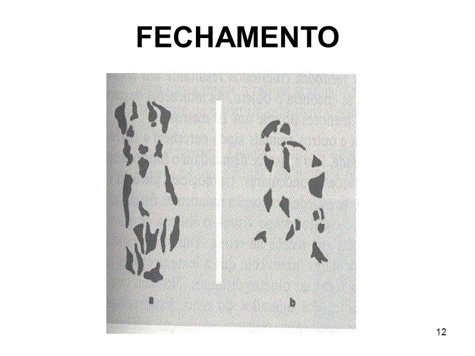 12 FECHAMENTO