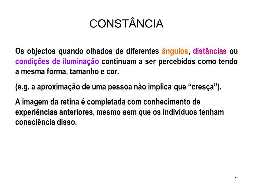15 1.Os indícios de profundidade permitem saber a que distância está o objecto do observador e dos outros objectos.