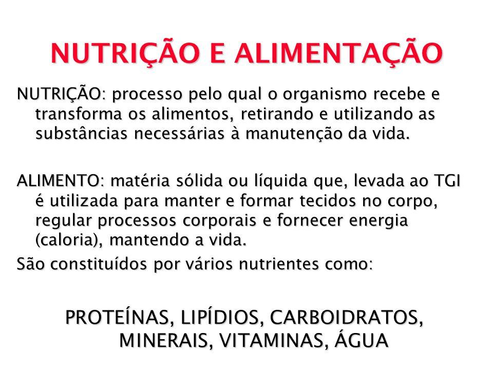 NUTRIÇÃO E ALIMENTAÇÃO NUTRIÇÃO: processo pelo qual o organismo recebe e transforma os alimentos, retirando e utilizando as substâncias necessárias à