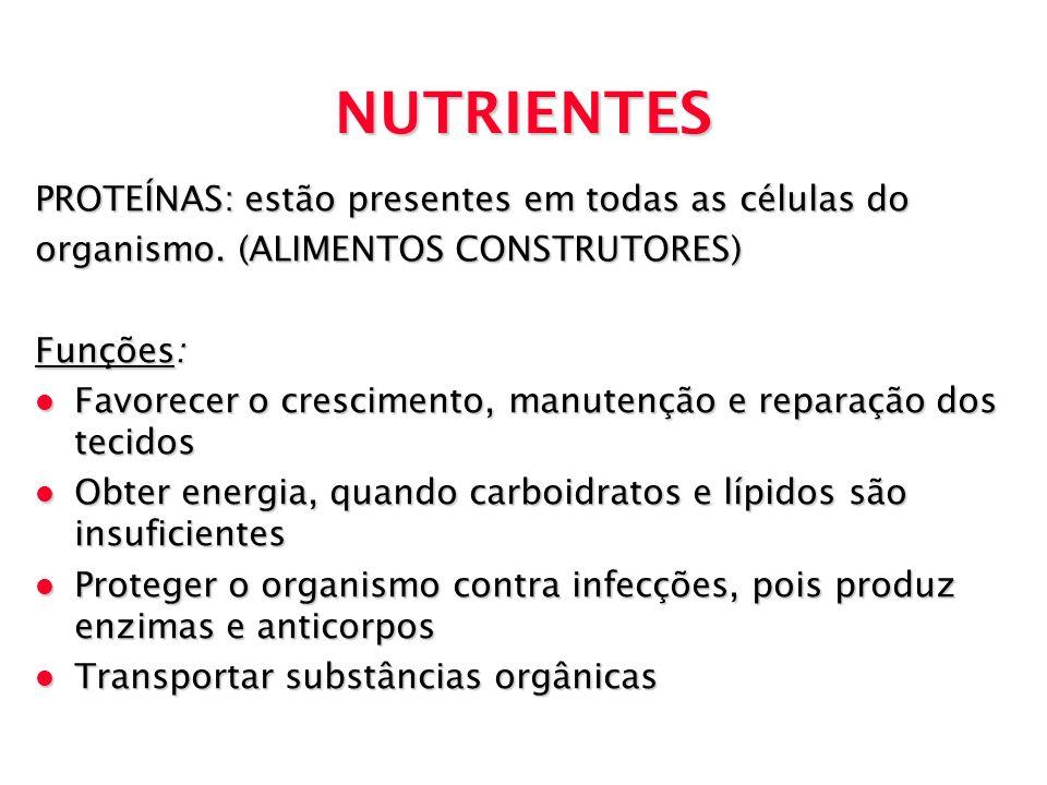NUTRIENTES PROTEÍNAS: estão presentes em todas as células do organismo. (ALIMENTOS CONSTRUTORES) Funções: l Favorecer o crescimento, manutenção e repa