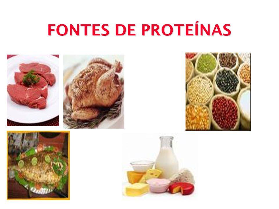 ÁGUA Embora não tenha valor nutricional é essencial à vida, pois está envolvida em todos os processos orgânicos.