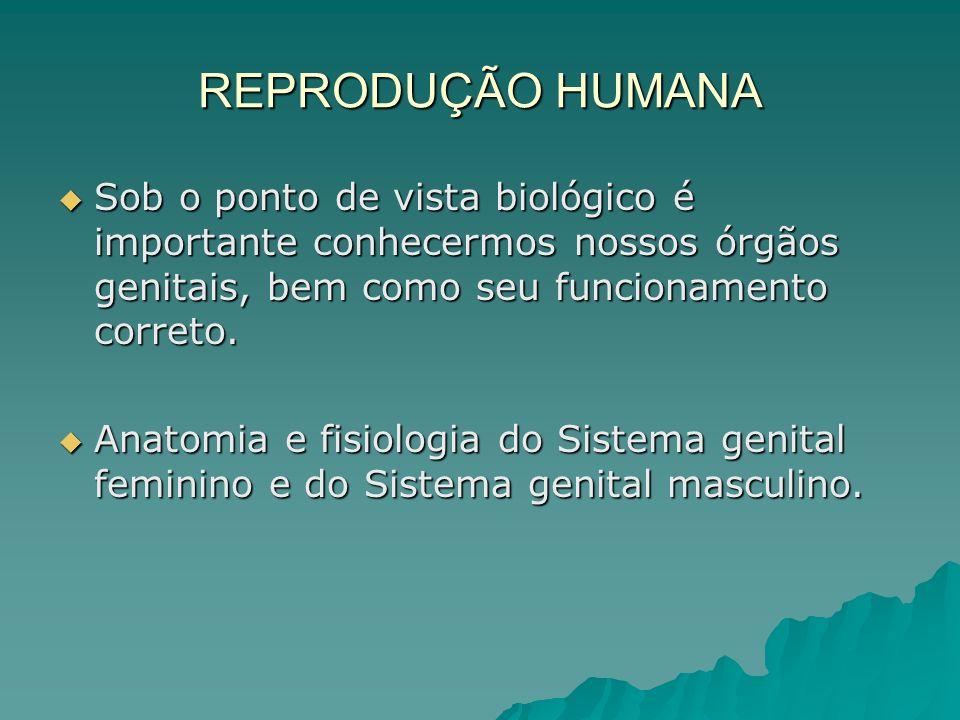 REPRODUÇÃO HUMANA Sob o ponto de vista biológico é importante conhecermos nossos órgãos genitais, bem como seu funcionamento correto. Sob o ponto de v