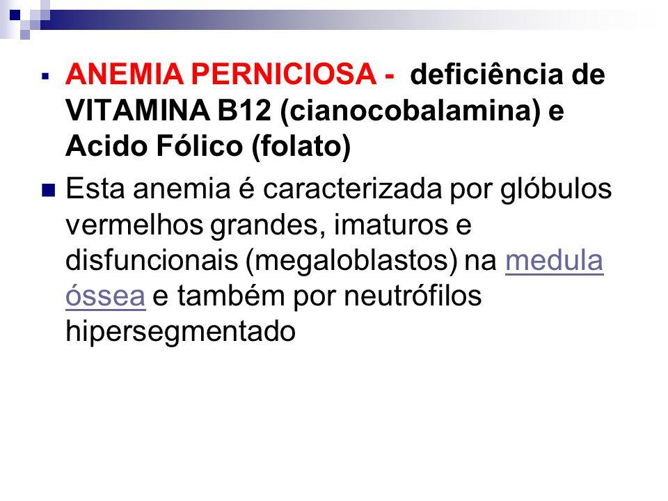 ANEMIA PERNICIOSA - deficiência de VITAMINA B12 (cianocobalamina) e Acido Fólico (folato) Esta anemia é caracterizada por glóbulos vermelhos grandes,