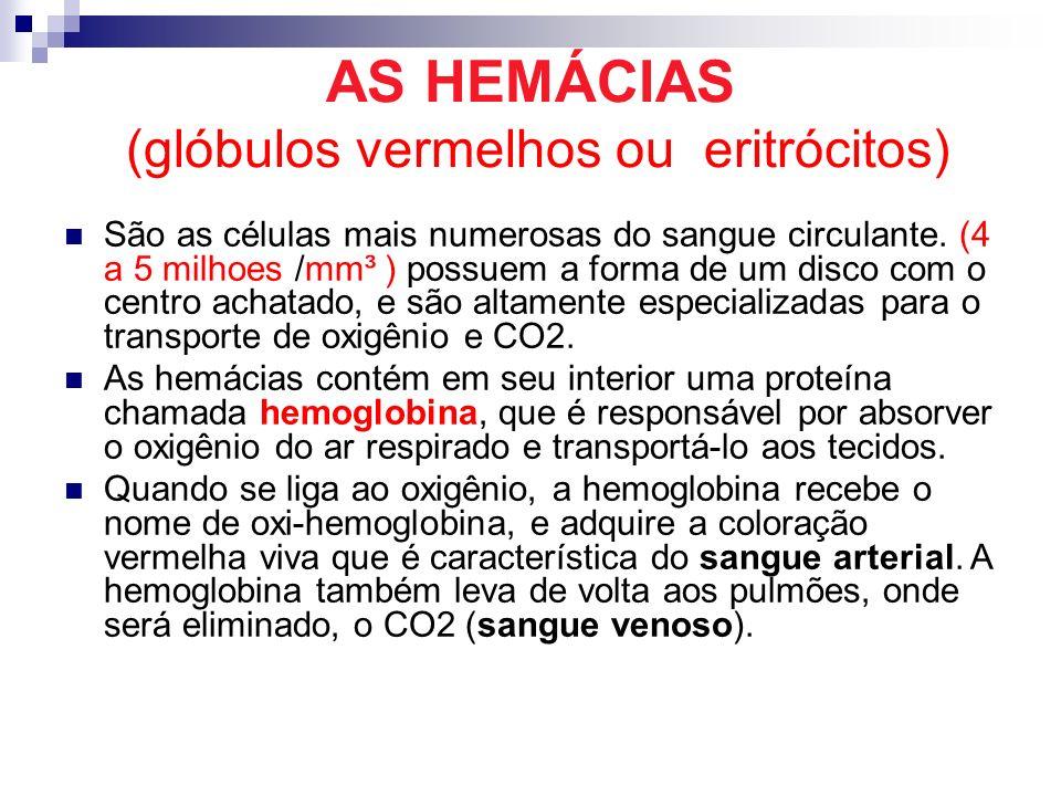 AS HEMÁCIAS (glóbulos vermelhos ou eritrócitos) São as células mais numerosas do sangue circulante. (4 a 5 milhoes /mm³ ) possuem a forma de um disco