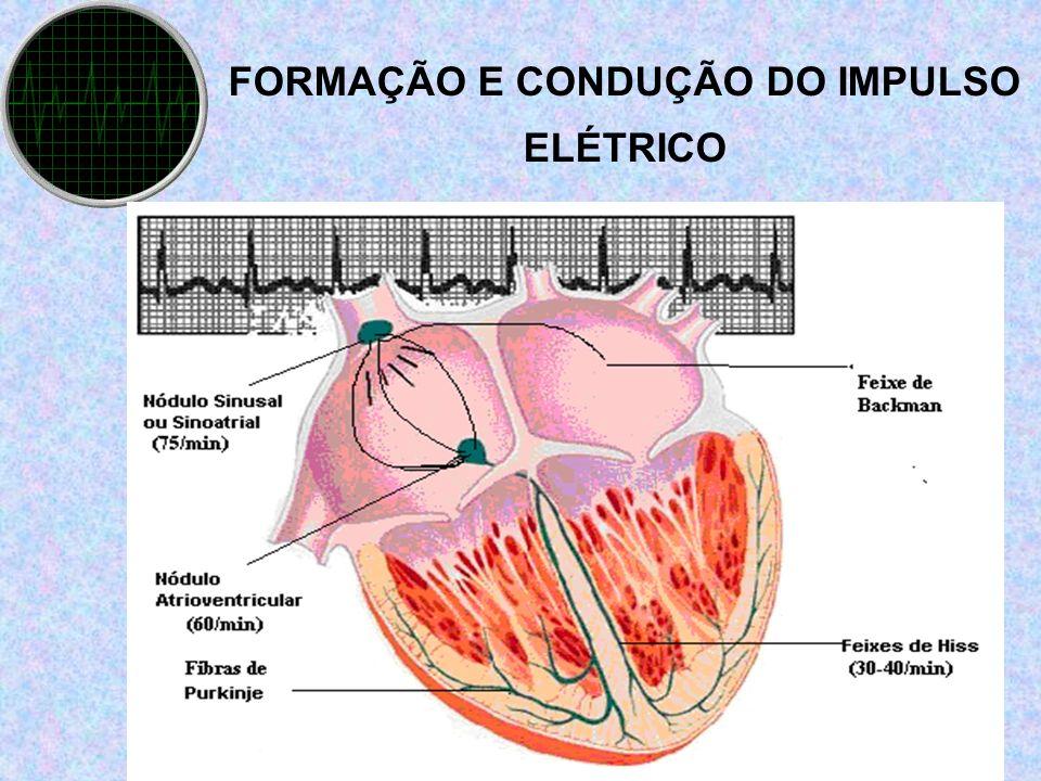 FORMAÇÃO E CONDUÇÃO DO IMPULSO ELÉTRICO