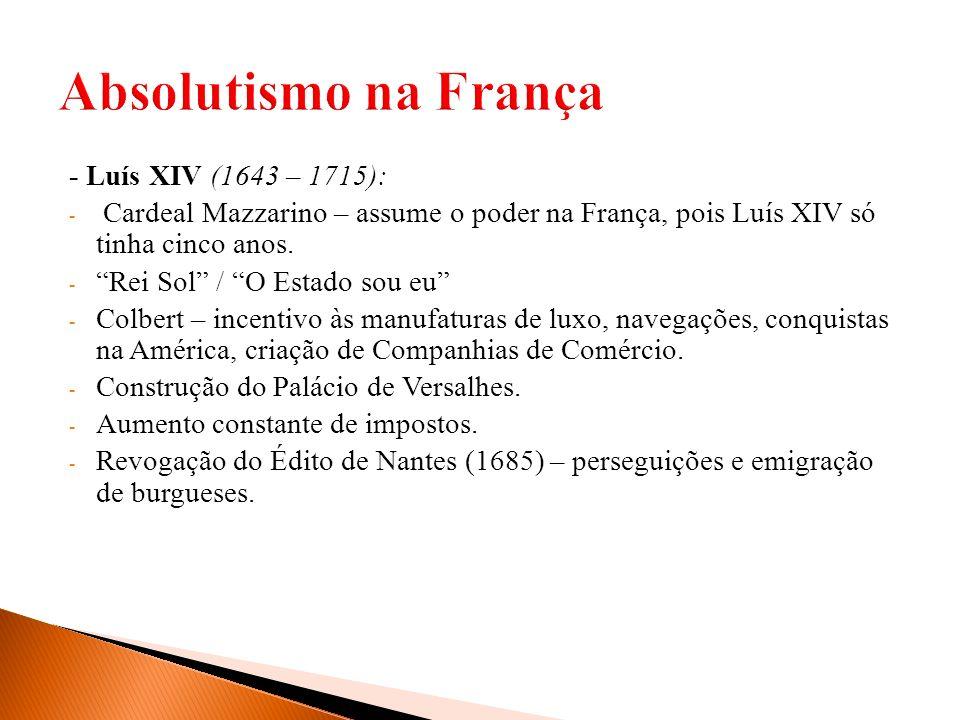 - Luís XIV (1643 – 1715): - Cardeal Mazzarino – assume o poder na França, pois Luís XIV só tinha cinco anos. - Rei Sol / O Estado sou eu - Colbert – i