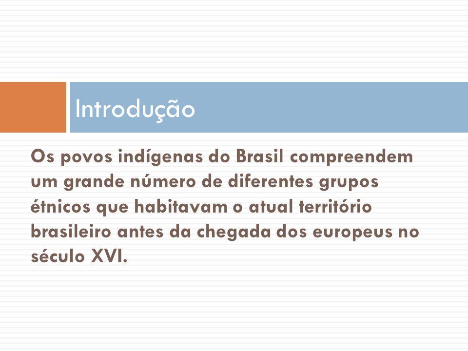 Os povos indígenas do Brasil compreendem um grande número de diferentes grupos étnicos que habitavam o atual território brasileiro antes da chegada do