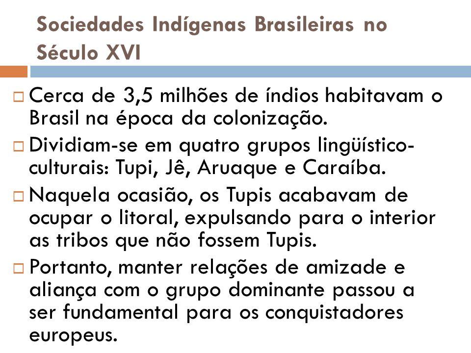 Sociedades Indígenas Brasileiras no Século XVI Cerca de 3,5 milhões de índios habitavam o Brasil na época da colonização. Dividiam-se em quatro grupos
