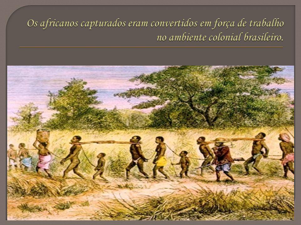 Um dos quilombos mais conhecidos da história brasileira foi Palmares, instalado na serra da Barriga, atual região de Alagoas.