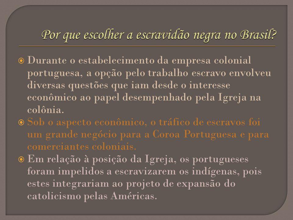Durante o estabelecimento da empresa colonial portuguesa, a opção pelo trabalho escravo envolveu diversas questões que iam desde o interesse econômico