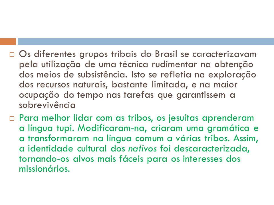 Os diferentes grupos tribais do Brasil se caracterizavam pela utilização de uma técnica rudimentar na obtenção dos meios de subsistência. Isto se refl