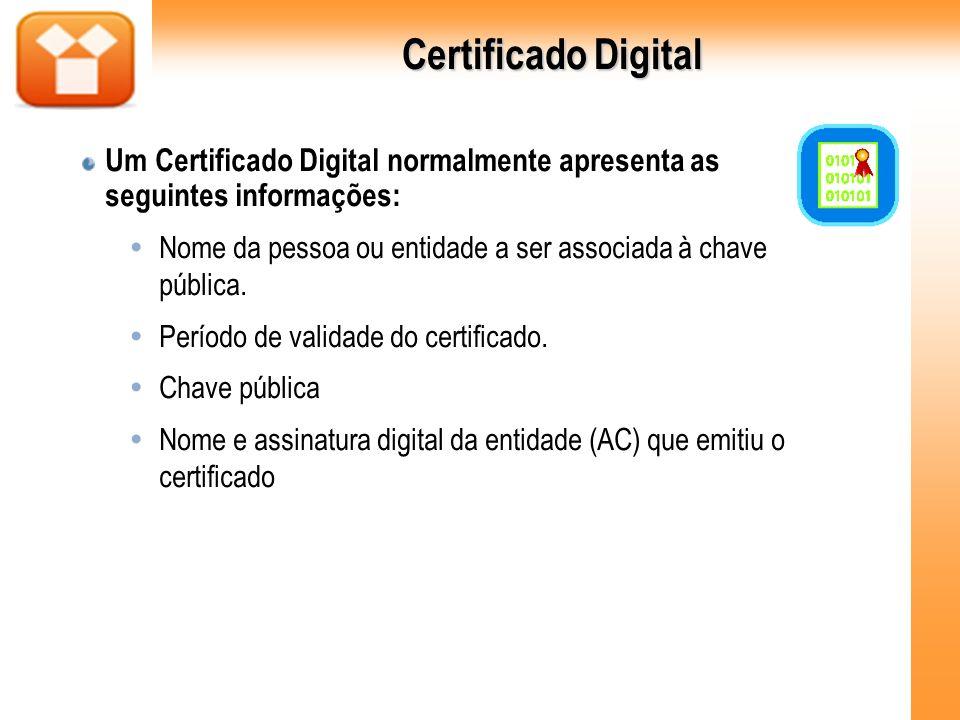 Um Certificado Digital normalmente apresenta as seguintes informações: Nome da pessoa ou entidade a ser associada à chave pública. Período de validade