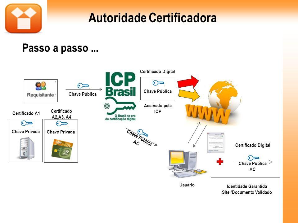 Chave Pública Chave Privada Certificado A1 Chave Privada Certificado A2,A3, A4 Chave Pública Assinado pela ICP Certificado Digital Usuário Certificado