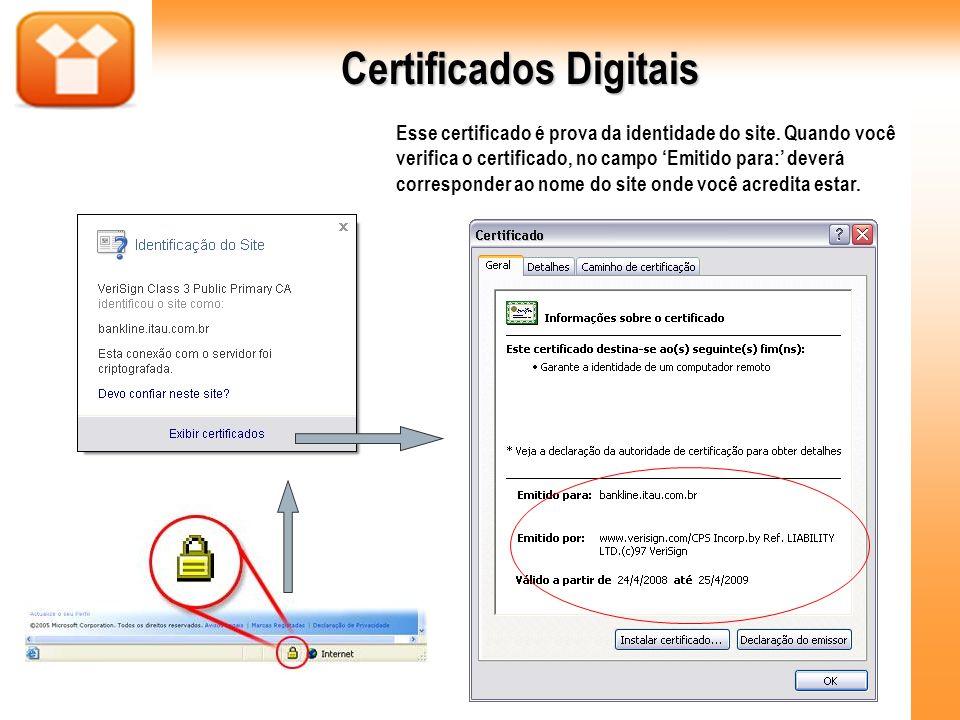 Esse certificado é prova da identidade do site. Quando você verifica o certificado, no campo Emitido para: deverá corresponder ao nome do site onde vo