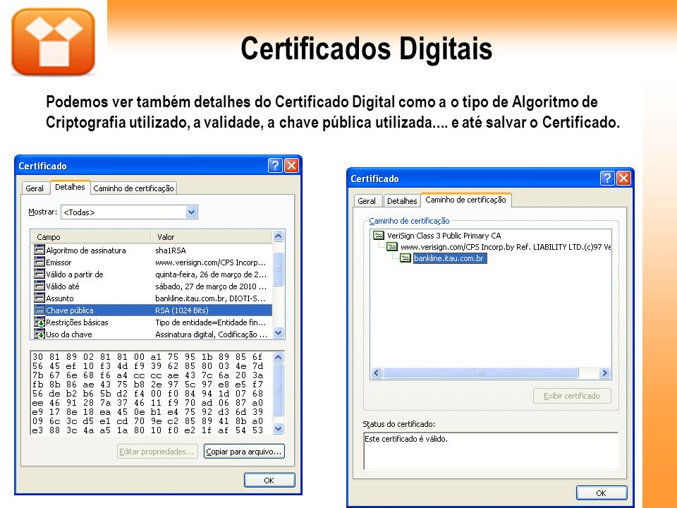 Certificados Digitais Podemos ver também detalhes do Certificado Digital como a o tipo de Algoritmo de Criptografia utilizado, a validade, a chave púb