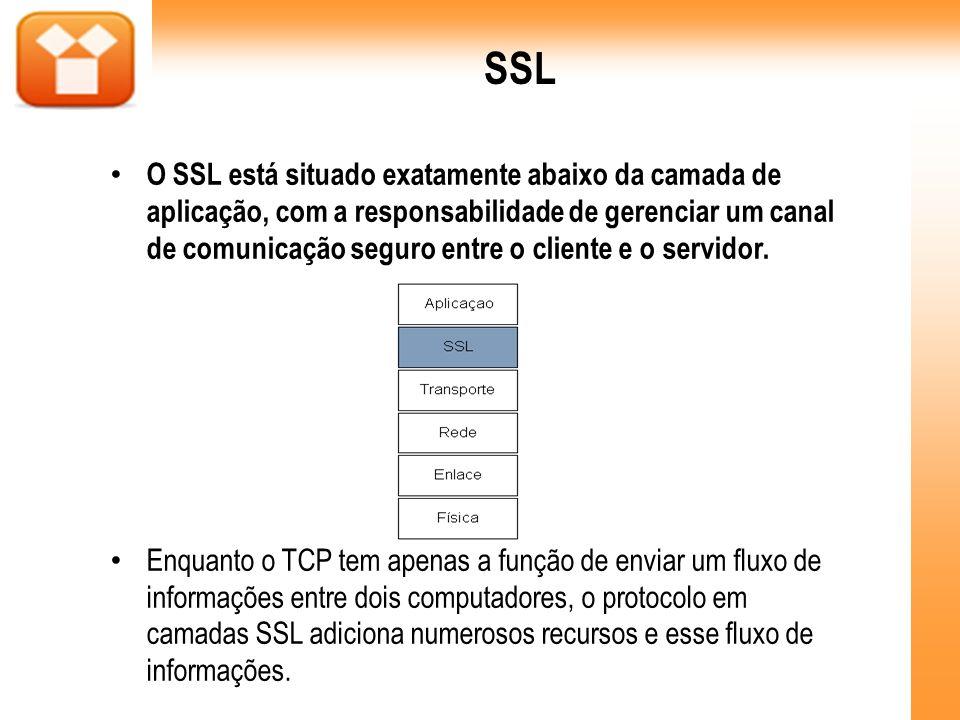 SSL O SSL está situado exatamente abaixo da camada de aplicação, com a responsabilidade de gerenciar um canal de comunicação seguro entre o cliente e