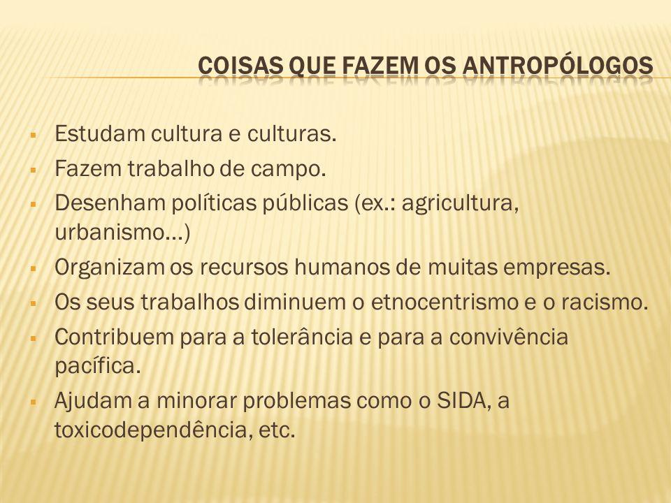 Estudam cultura e culturas. Fazem trabalho de campo. Desenham políticas públicas (ex.: agricultura, urbanismo...) Organizam os recursos humanos de mui