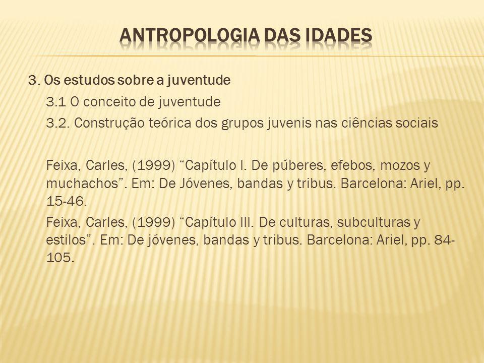 3. Os estudos sobre a juventude 3.1 O conceito de juventude 3.2. Construção teórica dos grupos juvenis nas ciências sociais Feixa, Carles, (1999) Capí