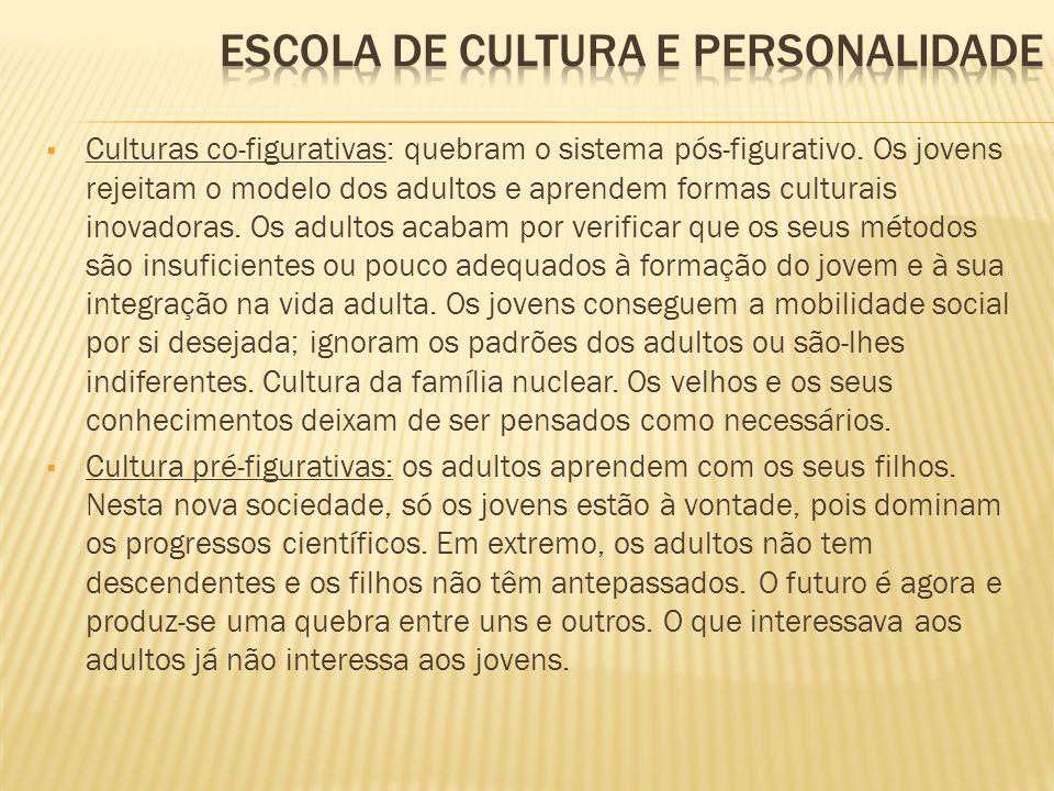 Culturas co-figurativas: quebram o sistema pós-figurativo. Os jovens rejeitam o modelo dos adultos e aprendem formas culturais inovadoras. Os adultos