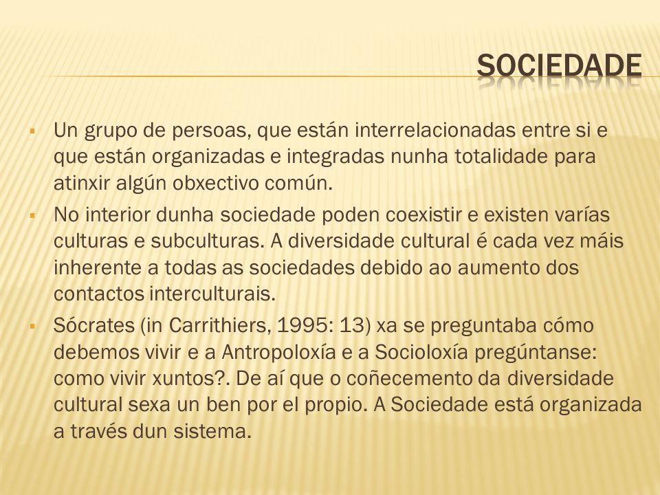 Un grupo de persoas, que están interrelacionadas entre si e que están organizadas e integradas nunha totalidade para atinxir algún obxectivo común. No