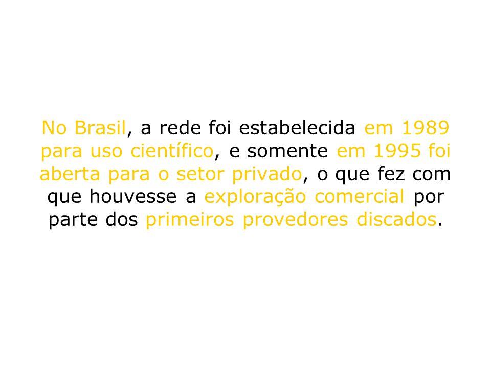 No Brasil, a rede foi estabelecida em 1989 para uso científico, e somente em 1995 foi aberta para o setor privado, o que fez com que houvesse a explor